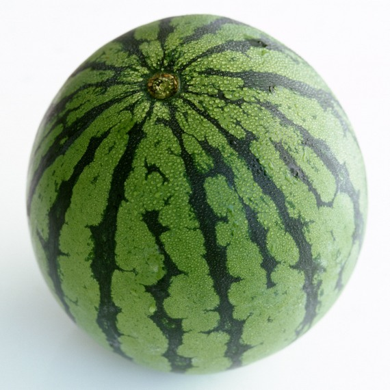 Watermelon from 4photos.net