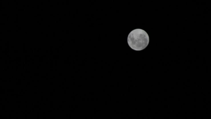 Purnama Bulan Rabiul Awwal
