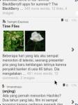 WordPress for BlackBerry - Read